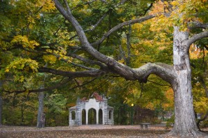 Autumn Colors at Indiana University - Photo Tripping America