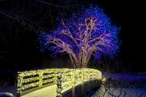 Bridge to Christmas - Photo Tripping America